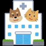 ペットの病気と対策について